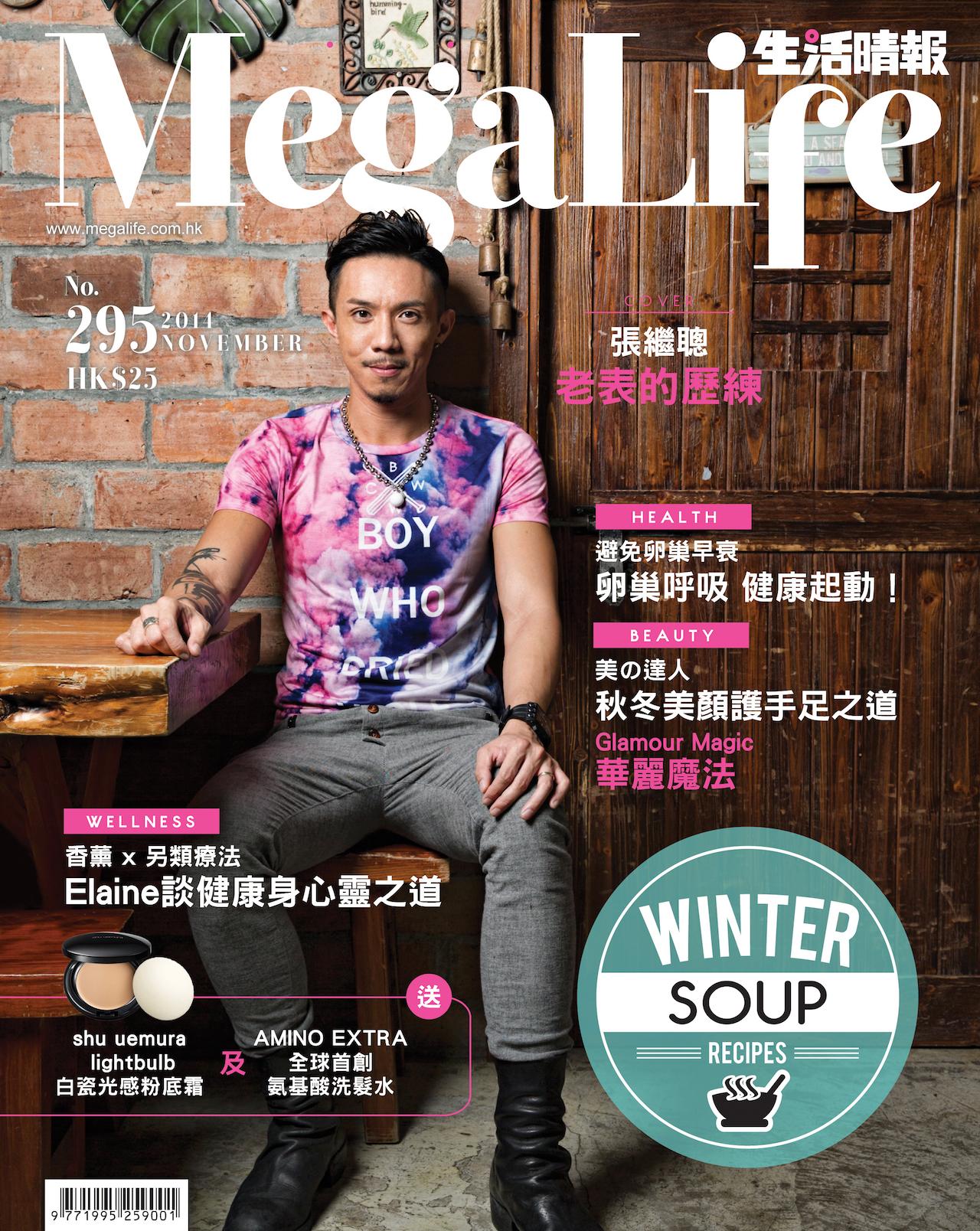 Cover(J)_295Nov